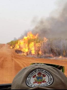 Imagens: Corpo de Bombeiros Militar