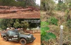 Batalhão Ambiental encontra área de preservação devastada em Arenápolis e aplica multa de R$ 50 mil