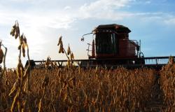Parecis e Médio Norte abrigam os municípios com maiores valores da produção agrícola do Brasil
