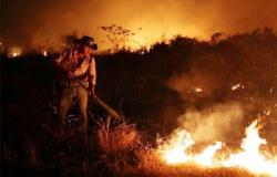 Incêndios no Pantanal: por que o fogo ainda ameaça o ecossistema mesmo após a chegada das chuvas