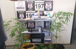 Polícia Civil prende traficantes e fecha ponto de venda de drogas em Barra do Bugres