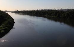Piracema - Fiscalização é intensificada no período de defeso para coibir pesca ilegal