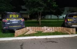 Caminhoneiro é preso em MT transportando carga de cocaína avaliada em R$ 45 milhões