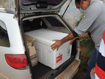 Covid-19: Regional de Tangará da Serra recebe hoje 5.960 doses Sinovac e AstraZeneca. Nova Olímpia terá 980 doses