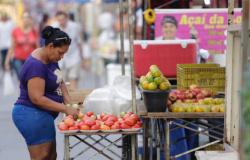 Onda de frio ameaça plantações e pode aumentar preços do café, frutas e hortaliças