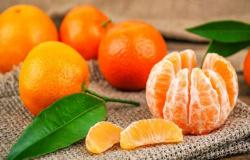 Benefícios da tangerina: fruta cítrica é fonte de energia e saúde