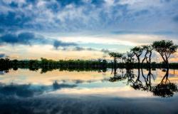 20 curiosidades sobre a Amazônia