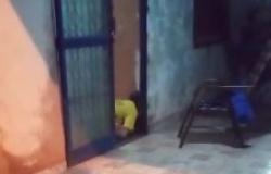 Assassinos chegam em carro preto e executam idoso na porta de casa em VG