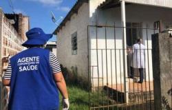 Dia do Agente de Saúde: profissionais fazem a diferença no combate à covid