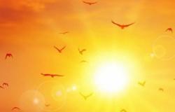 MT tem 101 municípios ameaçados de calor extremo; veja a lista
