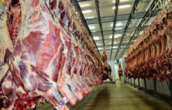 Exportações de carne de MT em setembro ainda não refletem embargo chinês