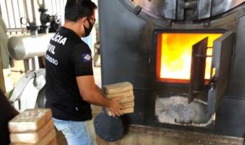 Mais 102 quilos de entorpecentes são incinerados pela Polícia Civil em Sapezal