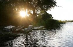 PIRACEMA - Pescadores e estabelecimentos devem declarar estoque de pescado até dia 2 de outubro