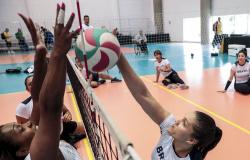 Atletas de nove modalidades retornam em fevereiro ao CT Paralímpico