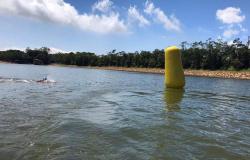 Maratonas Aquáticas: covid-19 altera sede de seletivas nacionai