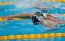 Fernando Scheffer avança à final dos 200m livre em Tóquio; 4x100m livre fica em oitavo