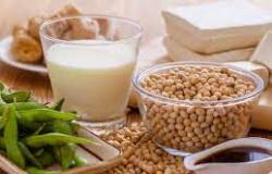 Soja convencional se torna cada vez mais nicho seleto de mercado para produtores de Mato Grosso
