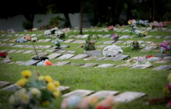 MT registra 10 mortes em 24h; ocupação de UTIs cai para 38%