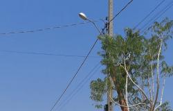 Equipe de iluminação realiza manutenção no Parque das Nações