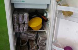 Polícia acha tabletes de maconha escondidos em geladeira e dois são presos em MT