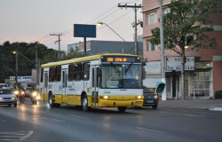 Procon-MT é contra reajuste de tarifa do transporte urbano