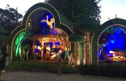 Cáceres abre festividades natalinas com projeto inédito associado à vida no Pantanal