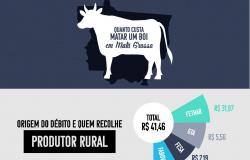 Pecuaristas deixam cerca de 64% do lucro do boi para os cofres públicos