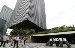 Pressionado, BNDES muda chefe do Fundo Amazônia antes de investigação do TCU e CGU; entenda os bastidores
