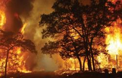 Focos de queimada aumentam em 4 mil ocorrências em menos de 20 dias