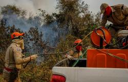 Focos de incêndio no Pantanal mato-grossense reduzem em 80%; Governo continua com operação na região