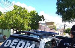 Crimes de violência doméstica e sexual geram instauração de 2.332 inquéritos policiais na capital