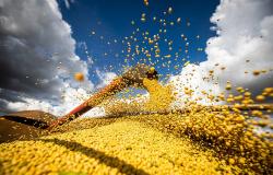 Colheita de soja em MT gera milhares de empregos e salários e benefícios atraem trabalhadores de outros estados