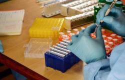Em 24 horas, MT registra 73 mortes e 614 novos casos de Covid-19