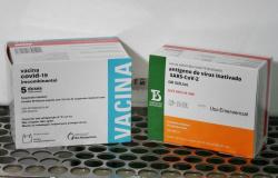 MT recebe mais de 50 mil doses de vacinas contra a Covid-19 nesta sexta-feira