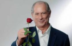 Me engana que eu gosto: uma rosa que fede a mentira e corrupção