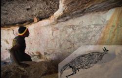 Canguru é o tema da arte rupestre mais antiga da Austrália