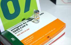 Aplicação da segunda dose da Coronavac será temporariamente suspensa nesta segunda-feira (17)
