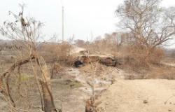 Enfrentamento às queimadas: TCE-MT institui comissão e lança comitê de gestão ambiental