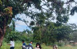Lagoa do Jacaré, no bairro Cristo Rei, recebe mutirão de limpeza