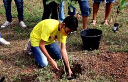 Secretaria promove formação para 300 profissionais sobre Educação Ambiental