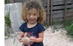 SP: Polícia prende suspeito de matar a tiros menina de 4 anos