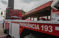 Ações de monitoramento evitam incêndios florestais de grandes proporções em Mato Grosso