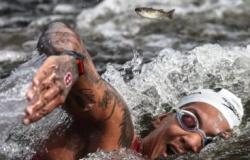 Ouro em Tóquio coroa carreira vitoriosa de Ana Marcela Cunha