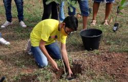 Smecel e DAE abrem inscrições para concurso sobre Educação Ambiental