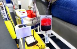 Empresas poderão ganhar selo por incentivar doações de sangue e medula