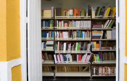 Inscrições estão abertas para curso de literatura para professores das séries iniciais