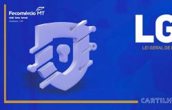 Fecomércio-MT disponibiliza cartilha orientativa sobre a LGPD