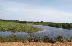 Relatório aponta que 65% dos pontos monitorados da Transpantaneira estão com água