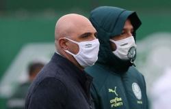 Palmeiras supera meta e arrecada R$40 milhões com a Libertadores