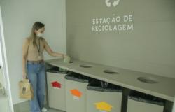 Ponto de coleta de material reciclável no TCE-MT contribuirá com castrações e alimentação de animais abandonados